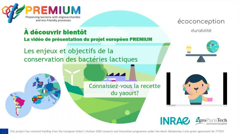 Le projet européen RISE PREMIUM sur la préservation des bactéries lactiques