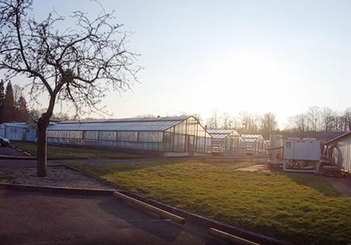L'observatoire du végétal « Culture de plantes et Phenoscope » de l'IJPB vous ouvre ses portes !